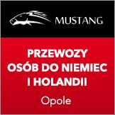 przewozy do NIemiec i Holandii Busy Mustang.pl
